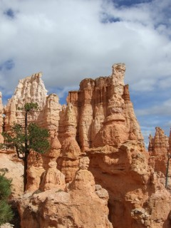 hoodoos 240x320