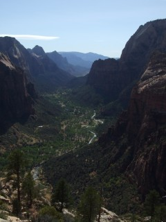 zion canyon view 240x320
