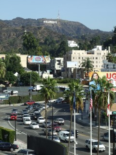 hollywood sign 240x320