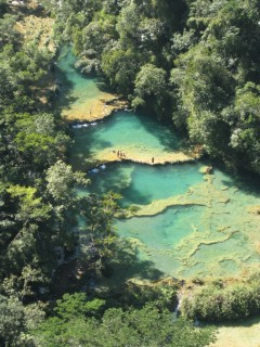 pools semuc champy 240x320