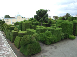 hedge garden ipiales 320x240