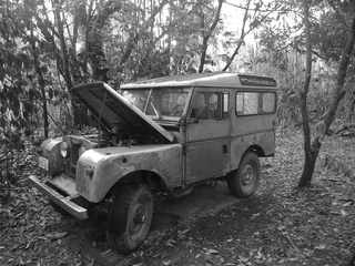 1955 land rover 320x240