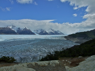 immense grey glacier 320x240